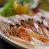 Škampi / Shrimps